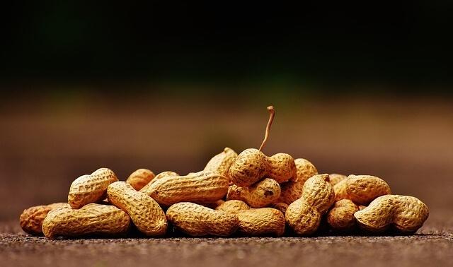 今日のラッキーアイテム「ピーナッツ」