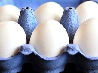 今日のラッキーアイテム「卵」
