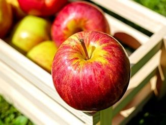 今日のラッキーアイテム「リンゴ」の画像