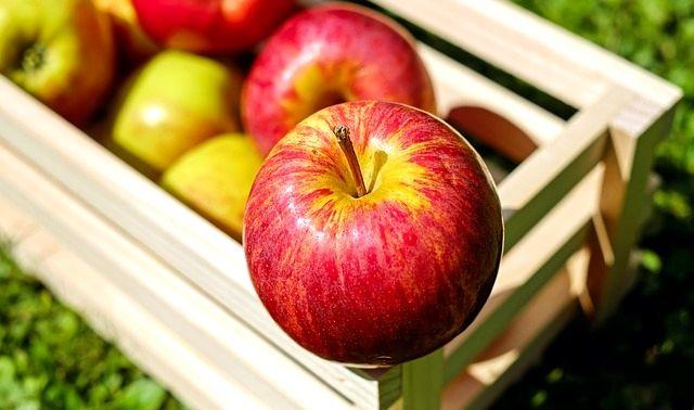 今日のラッキーアイテム「リンゴ」