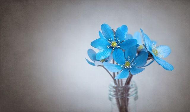 ラッキーアイテム「花瓶」の画像
