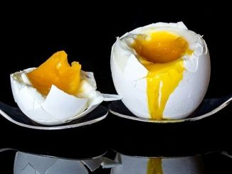 ラッキーアイテム「ゆで卵」