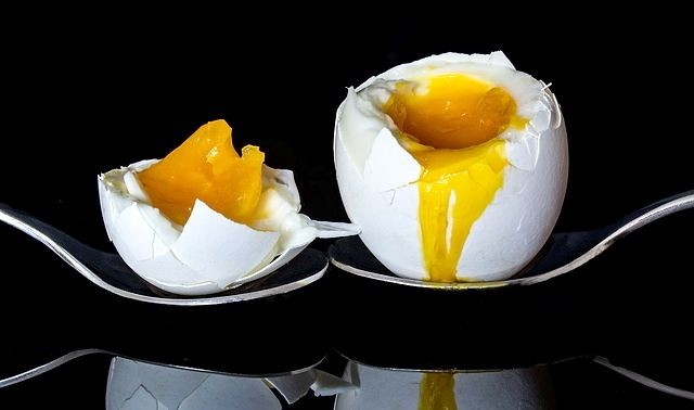 今日のラッキーアイテム「ゆで卵」
