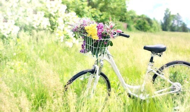 今日のラッキーアイテム「自転車」