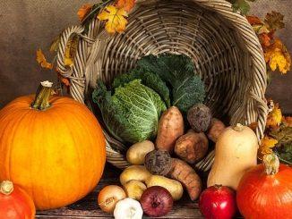 今日のラッキーアイテム「旬の野菜」