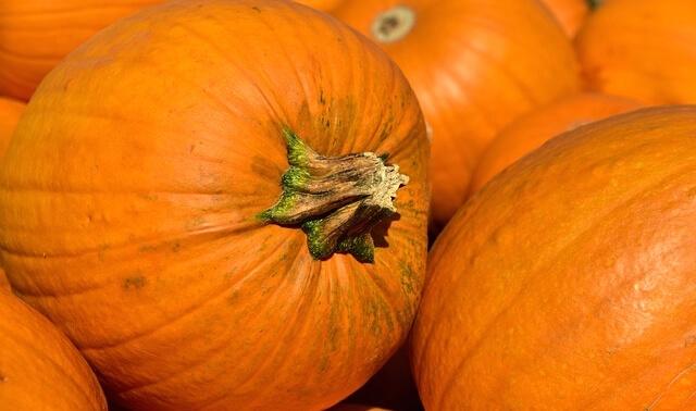 今日のラッキーアイテム「かぼちゃ」